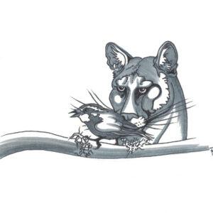 Snack by Bill Roy original illustration ink on paper  8.5″x 11″
