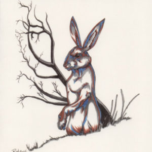 Rabbit Greeting Card – Bill Roy – OUT OF STOCK
