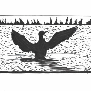 Goose by Bill Roy original illustration ink on paper  8.5″x 11″