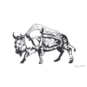 """Bison Begins"" by Bill Roy original illustration ink on paper  8.5″x 11″"