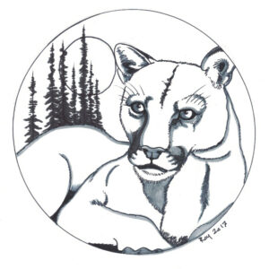 """Cougar Moon"" by Bill Roy original illustration ink on paper  8.5″x 11″"