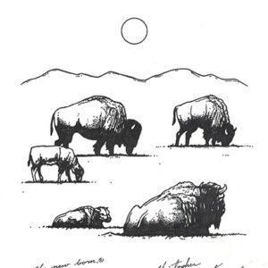"""The Herd"" original illustration by Christopher Chambaud felt-tip on paperboard  8.5″x 11″"
