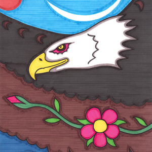Wildrose Eagle by Christopher Chambaud felt-tip on paperboard  8.5″x 11″