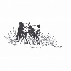 A Bear's Life by Bill Roy ink on paper  8.5″x 11″