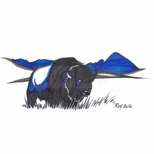 Buffalo by Bill Roy ink on paper  8.5″x 11″