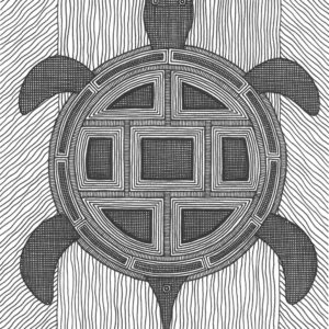 Turtle Power by Christopher Chambaud felt-tip on paperboard  8.5″x 11″