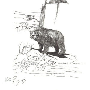 Fishing Grizzly by Bill Roy original illustration ink on paper  8.5″x 11″