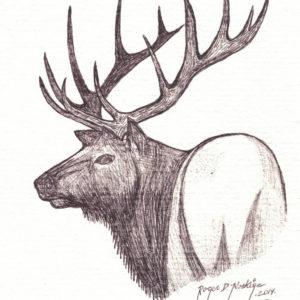Caribou by Roger Noskiye ink  8.5″x 11″