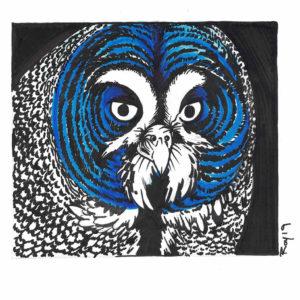 Blue Owl by Bill Roy original illustration ink on paper  8.5″x 11″