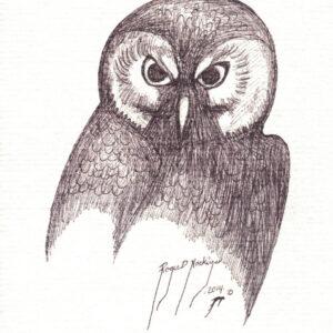 Owl by Roger Noskiye ink  8.5″x 11″